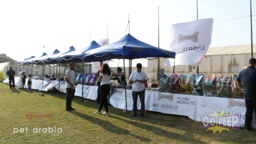 PET ARABIA DOG SHOW – 30 SECONDS